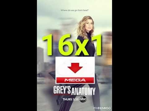 Serie De Tv Anatomía De Grey Grey S Anatomy Hd Mega1link Latino Anatomía De Grey Grey S Anatomy Anatomía