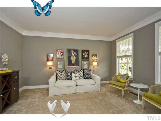 Cream Carpet Living Room Ideas Feature Wall To Match Cream Carpet Google Search In 2 Cream Carpet Living Room Tropical Living Room Living Room Furniture Layout