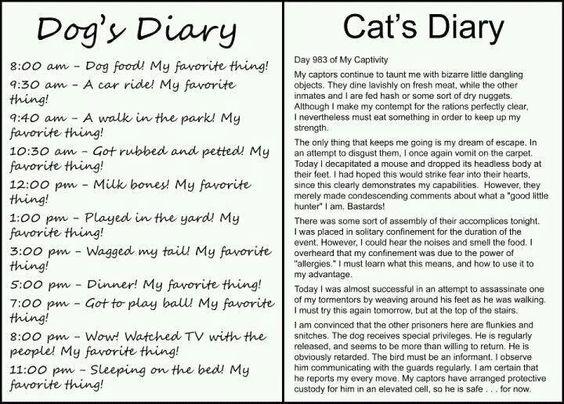 Haha ... LOVE IT! So true, so true!