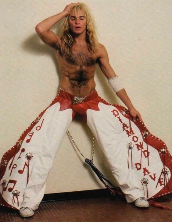 David lee roth gay