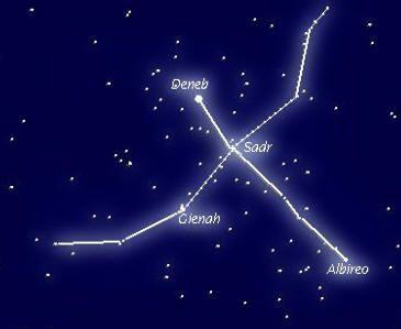 """La Costellazione del Cigno.  Costellazione settentrionale già annoverata nelle 48 di Tolomeo e presente nelle 88 odierne. Nella sua parte centrale si trova uno dei campi più ricchi della Via Lattea,nella quale si estende verso sud tagliandola in 2 tramite un complesso sistema di nubi: la Fenditura del Cigno.DENEB: coda, SADR: corpo, GIENAH: ala est, RUKH: ala ovest, ALBIREO:becco. Presente anche il buco nero X-Cygnus X-1. Denominata anche """" Croce del Nord"""""""
