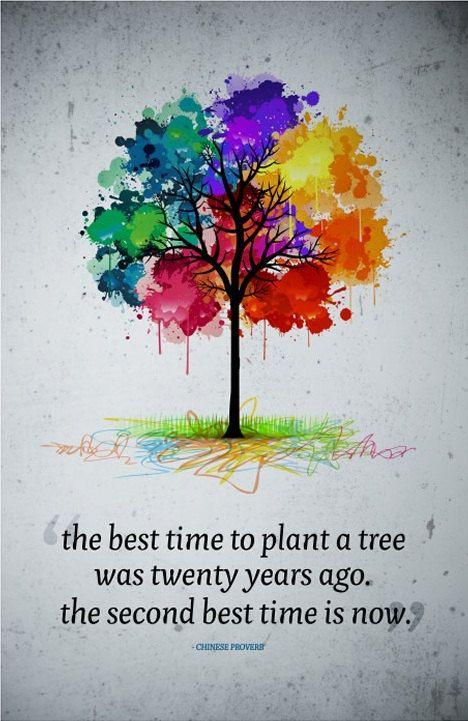 """""""O melhor momento para plantar uma árvore foi há vinte anos o segundo melhor momento é agora."""" - Chinese ..."""