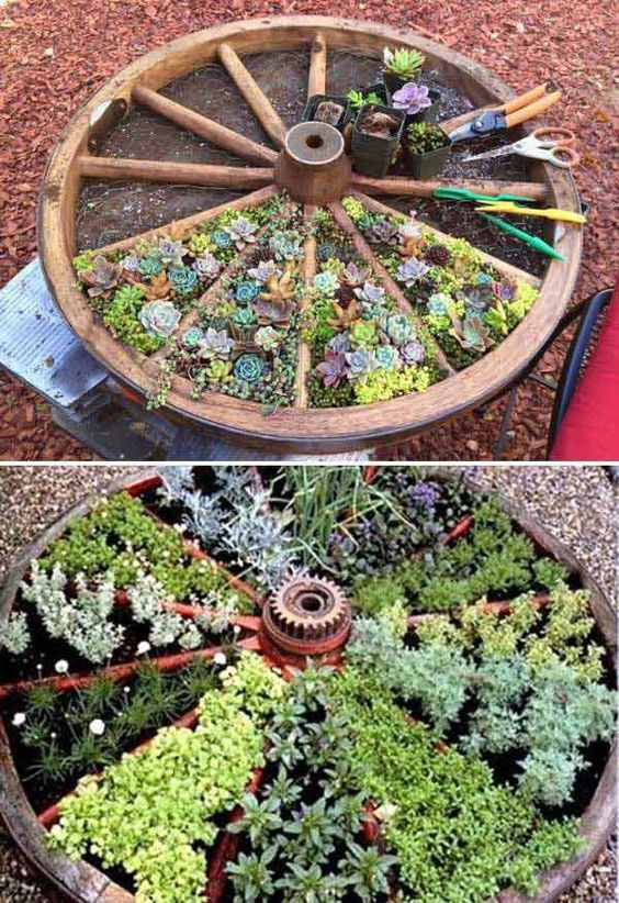 Recycle an old wagon wheel for a divided succulents bed.