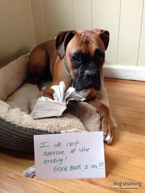 Gone Grrrrrrrl!  Bailey is in agreement about the way Gone Girl ends…..