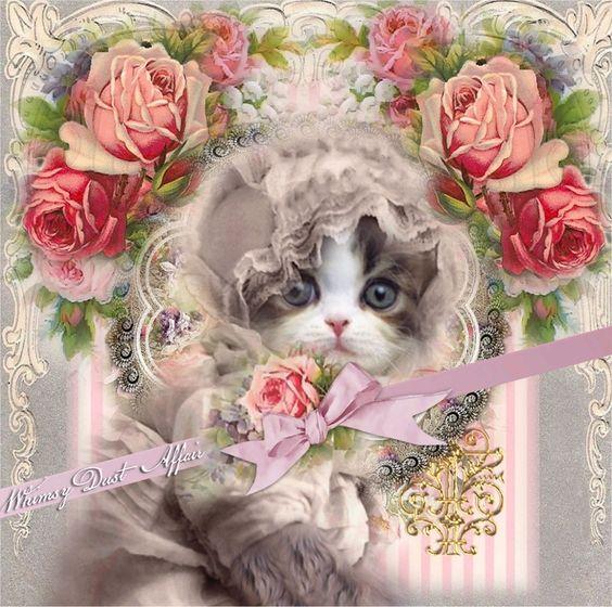 kitten in a bonnet