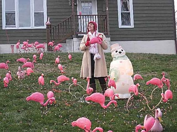 Tiny Home Designs: Lawn Decorations, Lawn And Flamingos On Pinterest