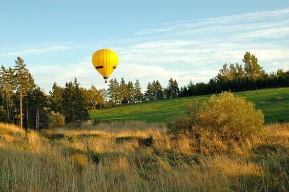 Above and Beeyond hot air balloon are frequent visitors and like to take off from our lawn during the summer.