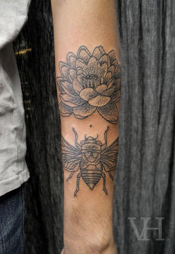 cicada by Valentin Hirsch