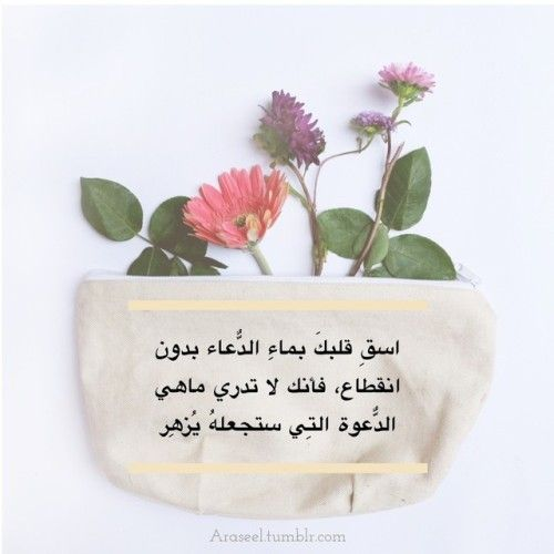 Pin By فريق أراسيل الدعوي On Araseel Quran Quotes Love Islamic Phrases Morning Greetings Quotes