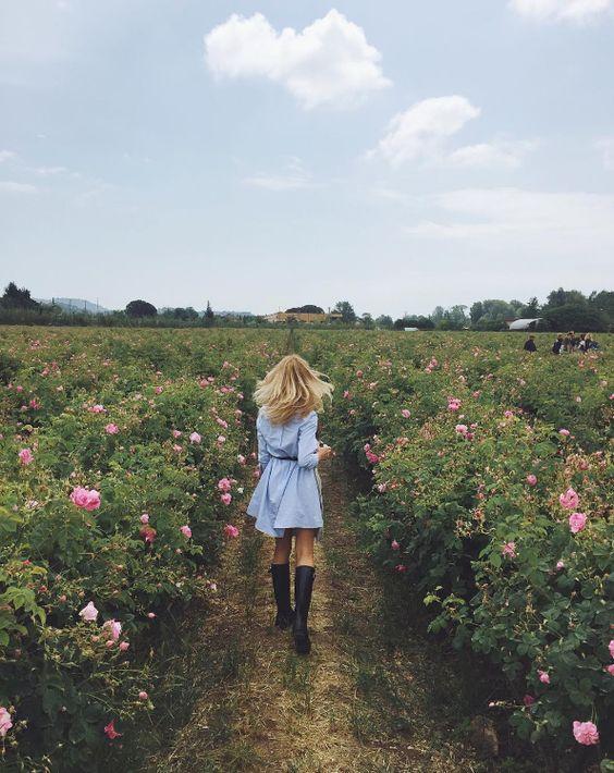 No rain, no flowers.: