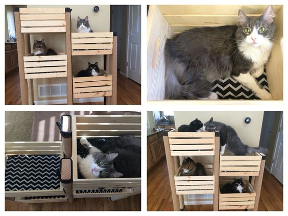 Cat tree using crates from Michaels with a 40% off coupon, 2x4s, and an upcycled rug. Inside the crates is washable fabric and batting - all for under $50!