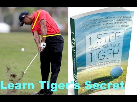 1 Step to Swinging like Tiger wins Book of the Year