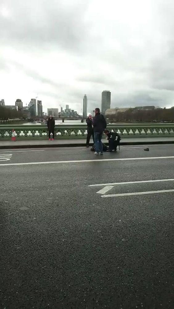 RADEK REAKTYWACJA: ob. bryt. i agent zaprawiony w korespondencjach z Afganistanu jechał akurat po zamachu taxi i sfilmował nieudolnie trzymaną po amatorsku (wertykalnie) kamerą horyzontalne pole zamachu http://unsinn.blox.pl/2017/03/ta-droga-jeszcze-o-cos-poprosic-w-ostatniej.html  nieszczęścia chodzą po Londynie parami: przegrany kandydat na Prezydenta RP blokuje Polaków na twiterze: Du kannst @sikorskiradek nicht folgen und die Tweets von @sikorskiradek nicht ansehen, da Du blockiert wurdest:
