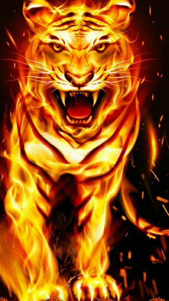 Pin By Marlen Cantarutti On Fire Tiger Pictures Lion Live Wallpaper Tiger Artwork