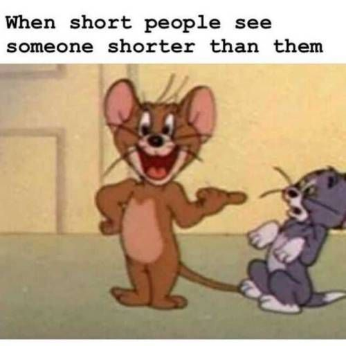 17 Hilarious Clean Humor Memes In 2020 Crazy Funny Memes Jerry Memes Really Funny Memes