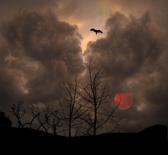 578 by peter holme iii on 500px