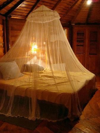 I love this idea of the curtain hanging around the bed. plus the light