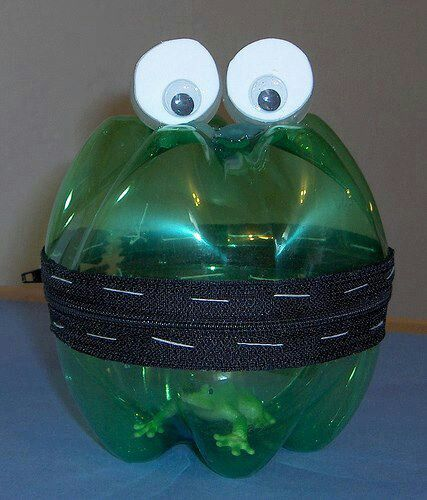 Frog cage