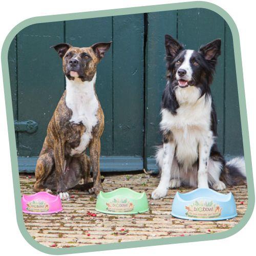 Táto štýlová miska Beco Bowl teba a tvojho psa dostane nielen jedinečným štvorvlnovým dizajnom, ktorý sa prispôsobí každému psiemu plemenu, ale aj vyhotovením v príjemných farbách.  Je vyrobená zo zbytkov rastlinných vlákien objavených v bambuse a z ryžových šupiek, ktoré sú určené na produkovanie výrobkov, ktoré podliehajú prirodzenému rozkladu. Je šetrná k životnému prostrediu a po jej kompostovaní je schopná kompletne sa rozložiť do 3-5 rokov.