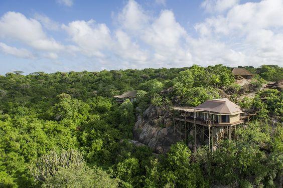 Mwiba Lodge in Tanzania