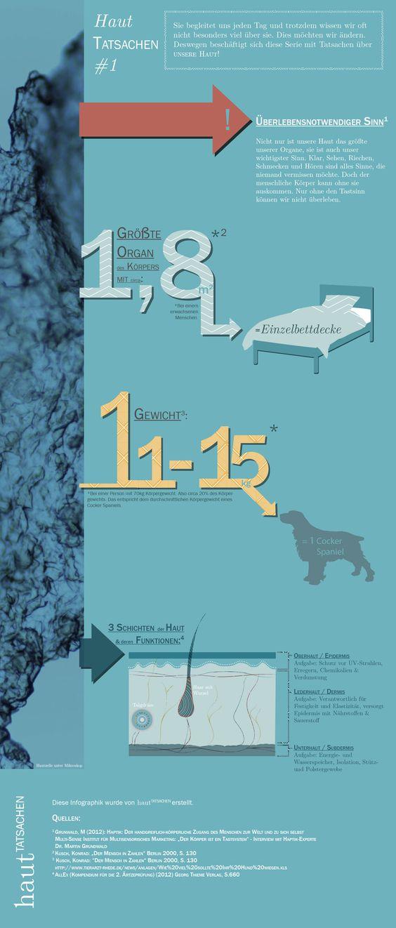 Haut Tatsachen Infografik #1 Was man alles nicht über Haut wusste
