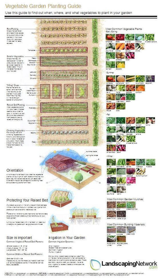 this handy vegetable garden planning guide from