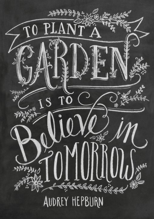 Aundrey Hepburn quote: To plant a garden is to believe in tomorrows. #quote #audreyhepburn #inspiration #gardening