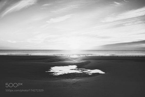 Stillness by Riley_Rhodes