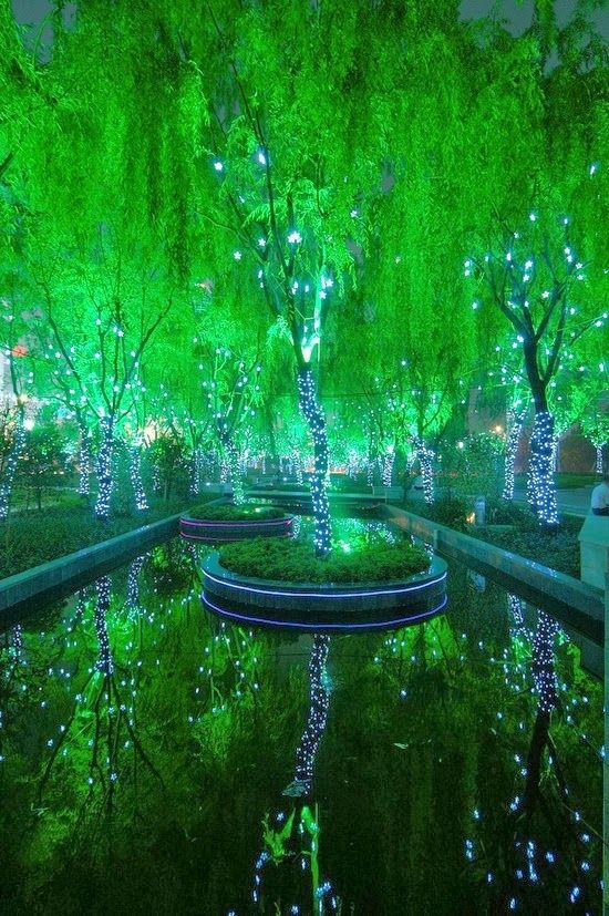 Magic Forest in Shanghai - this is where they should film the magicians nephew!