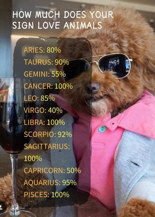 Horoscope Memes Quotes Zodiac Zodiac Signs Funny Zodiac Funny