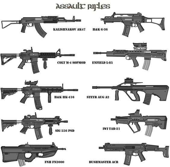 assault rifles NJ – Secrets of the Fed | Rifles ...