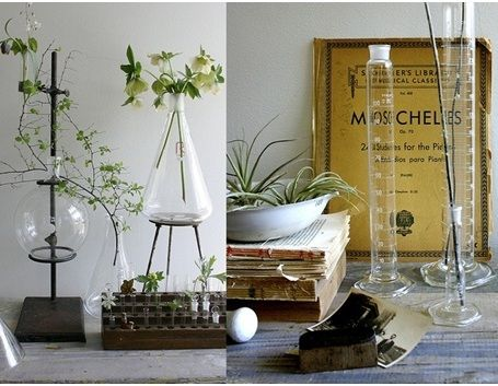 DECORATING YOUR HOME WITH A TOUCH OF (SCIENCE) CLASS