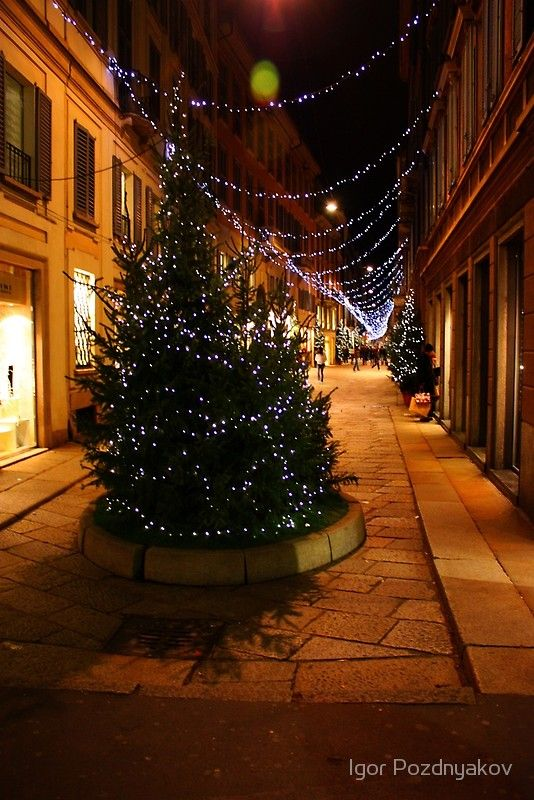 Milan A Night Street With A Christmas Tree 2010 Photographic Print By Igor Pozdnyakov Christmas Tree Tree Christmas