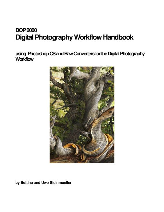 Digital Photography Workflow Handbook  using Photoshop CS and Raw Converters for…