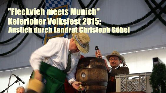 """""""Fleckvieh meets Munich"""" Keferloher Volksfest 2015: Anstich durch Landra..."""