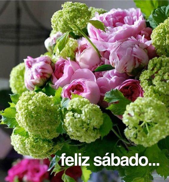 Feliz Sábado / Feliz Día / Sábado / Saturday / Happy Saturday / Happy Day / Que pases un lindo día / Buenos Días / Good Morning / Happy Weekend / Feliz Fin de Semana / Fin de Semana / Weekend
