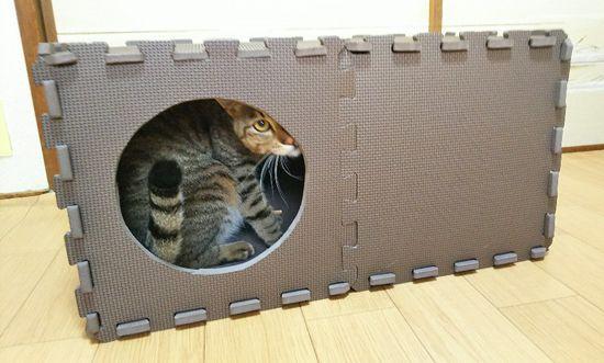 わずか500円で手作り猫ハウス ダイソーのジョイントマットが優秀 Catchu きゃっちゅ 猫ハウス 猫の家具 猫 ベッド 手作り