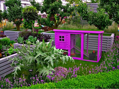 This color is striking and beautiful in this garden setting.  A great way to add a shock of color and a flock of hens to the garden!