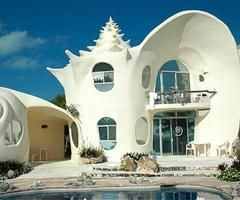 shell: Sea Shells, Unusual Homes, Dream House, Beach Houses, Dream Home, Crazy House, Isla Mujeres, Seashell House