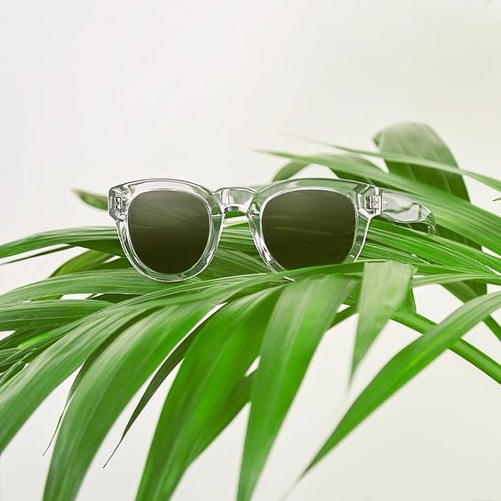 End sunglasses - Branding, still life, studio photography, contemporary, leafs, green: