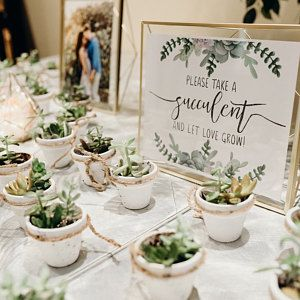 Dianakelly88 Added A Photo Of Their Purchase Etsy Bridal Shower Succulent Wedding Favors Bridal Shower Rustic