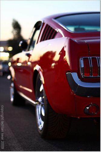 Mustang: Red Mustang, Cars Mustang, Mustang Cars, Classic Mustang, Dream Cars, Ford Mustangs