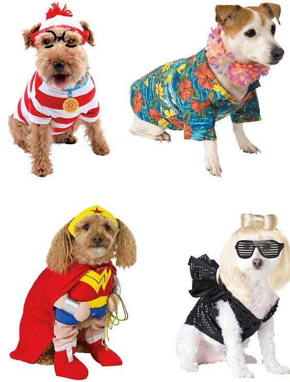 Fantasias de Carnaval para seu cão!!!