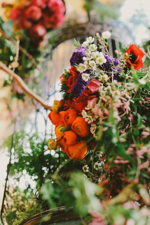 Flowers. Color.