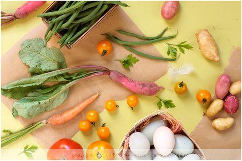 Présentation du régime Seignalet et liste complète des aliments à retirer pour suivre le régime hypotoxique du Dr Seignalet.