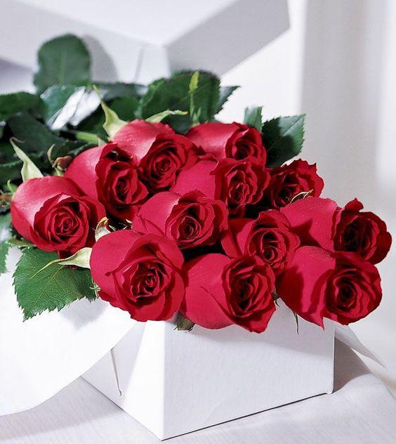 Flower Creations :: Premium Dozen Long Stem Red Roses: