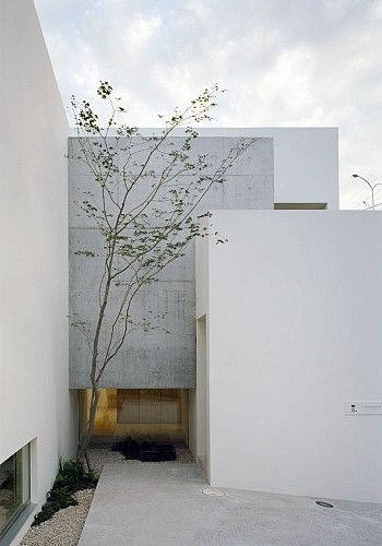 House in minamikasugaoka by hiroshi yoshikawa architects for Minimalist house with courtyard