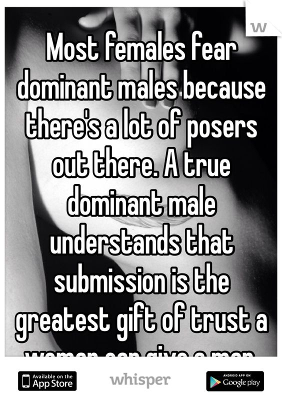 Male domination submission