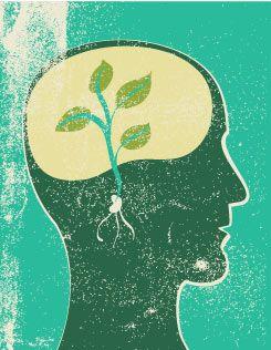 Seed brain