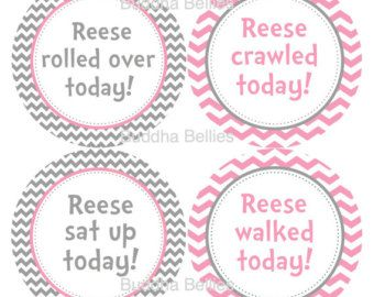 Personalized Baby Girl Milestone Stickers - Set of 4 -  Pink and Grey ChevronAdd Baby's Name to Your Set
